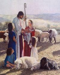 My_shepherd
